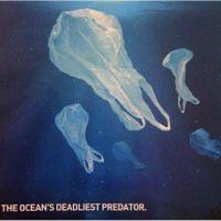 We Hate To Waste Plastic: The Ocean's Deadliest Predator | Please DO NOT throw away plastic - recycle instead!