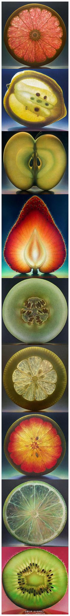 fruit cross section paintings by dennis wojtkiewicz.