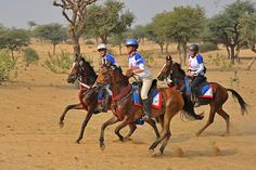 81km endurance horse event on the great Thar Dessert, rajasthan, India. Michael Huggan Photography.