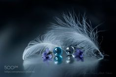 Serene Poetics - Copyright  Lafugue Logos All Rights Reserved
