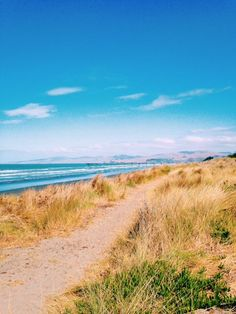There is so much to see and do in Christchurch, New Zealand; from city, beaches, trails, and rebuild post earthquake. New Brighton Beach, New Zealand Beach, Christchurch New Zealand, Kiwiana, Trail, Country Roads, Mountains, Landscape, City