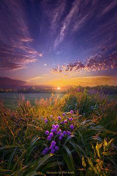 purple wildflowers and sunset pics Beautiful Photos Of Nature, Beautiful Sunset, Nature Photos, Amazing Nature, Beautiful World, Beautiful Nature Wallpaper, Foto Picture, Purple Wildflowers, Pretty Landscapes