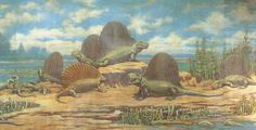 Five Dimetrodons and an Edaphosaurus - Charles R. Knight