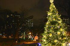 Flatiron Building - December 2014