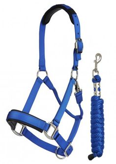 Lemieux LeMieux ProSport Headcollar & Leadrope Benetton Blue - LeMieux Prosport Nylon Head Collar Hardworking halters for every day Horse Riding School, Horse Riding Clothes, Nylons, Horse And Human, Leather Halter, Lead Rope, Horse Halters, Blue Horse, Baby Horses