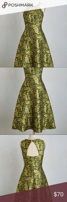 "Eva Franco ""It's a wild twirl"" Dress Beautiful green dress with flair. NWT / Size 4 Eva Franco Dresses Midi"