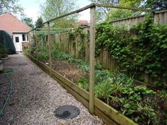 Vegetable raised beds with posts for covered greenhouse!  Brilliant!