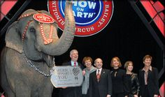 October 25 2013 - Los Angeles Bans the Use of Bullhooks in Circuses