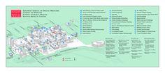 Boston University Medical Campus and Boston Medical Center Map - Boston Ma Campus Map, Area Map, Boston University, Medical Center, Graphics, Graphic Design, Printmaking