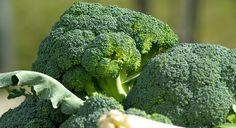 Przepis na pyszny lunch. Prosty pomysł na dietetyczny lunch. Sałatka z brokułów idealna na lunch. Jak ją przygotować? Co zjeść na lunch PRZEPIS