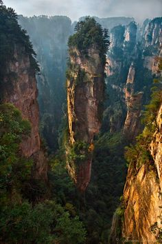 Zhangjiajie National Park in China. - from Amazing Nature in FB