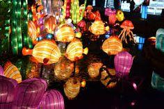 Image result for fish lantern