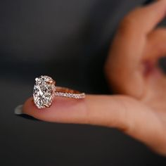CHELSEA ROSE PINK is a handcrafted Jean Dousset Diamonds solitaire engagement ring set in Rose Gold with Rare, natural Fancy Argyle pink pavé diamonds - Engagement Ring Settings, Diamond Engagement Rings, Solitaire Diamond, Solitaire Rings, Band Rings, Rose Gold Diamond Ring, Marquise Diamond, Oval Diamond Rings, Oval Shaped Engagement Rings