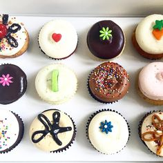 dc cupcakes boston