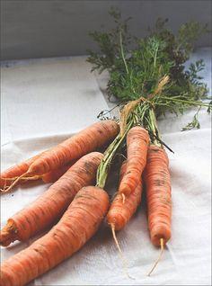 Wärmende Herbstküche: vegetarische Möhrensuppe mit gerösteten Möhren, Karottensaft und Ingwer (mit veganer Alternative)