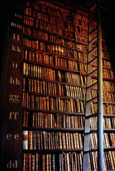 Trinity College Library in Dublin, Ireland. One of the largest and most extravagant libraries in the world! College Library, Dublin Library, Hogwarts Library, Library Books, Beautiful Library, Dream Library, Old Libraries, Bookstores, And So It Begins