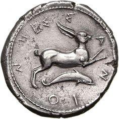 Tetradracma - argento - Messana (Messina), Sicilia (425-421 a.C.) - MEΣ-Σ-Α-Ν-ΙΟ-Ν una lepre salta vs.dx. in basso: un delfino - Münzkabinett Berlin