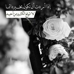 لا أريد التعلق بأحد أريد أن أعيش بسلام دون وداع ولا عتاب فبعض النهايات تكسر الخواطر ~ za