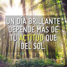 #saludmental #frase #frases #frasedeldia #actitudsaludable  #pensamiento