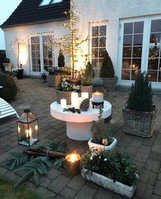 💫Good Night from my basket garden 😉🙋🏼 Premium Wordpress Themes, Good Night, Basket, Patio, Photo And Video, Outdoor Decor, Instagram, Thanksgiving, Tumblr
