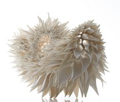 Hand Built Porcelain Sculptures by Nuala ODonovan Mimic Fractal Patterns Found in Nature