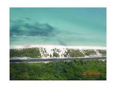 Offers of Land for Sale in Mexico