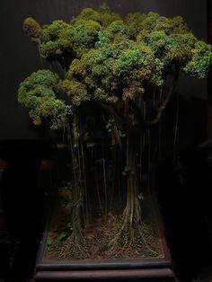 El Anillo de Barro - Welcome to the Jungle; mográfico - Obras de fantasía en proceso de fabricación