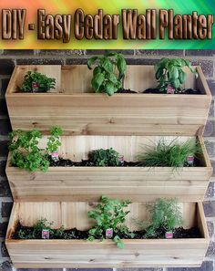 This simple cedar wall planter is great for herbs or spring flowers... #DIY #Planter
