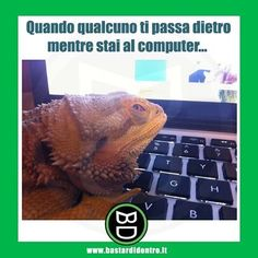 Seguici su youtube/bastardidentro #bastardidentro #computer #privacy www.bastardidentro.it