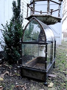 Edwardian Glass Case, for indoor gardeners and could be used as a bird cage if glass is replaced by wire. Terrarium Plants, Glass Terrarium, Paludarium, Vivarium, Glass Garden, Garden Art, Indoor Garden, Indoor Plants, Victorian Terrariums