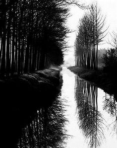 edward weston prints for sale | Holland Canal by Brett Weston, Limited Edition Print, Lithograph