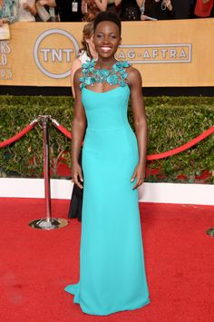 SAG Awards 2014 Red Carpet
