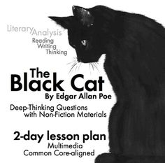 images about american lit on pinterest  edgar allan poe  the black cat two day lesson edgar allan poes story w