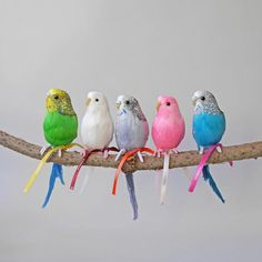 Melopsittacus undulatus Puebco artificial birds are made from polystyrene and real chicken feathers. With flexible wire attached totheir feet, thismakes it po