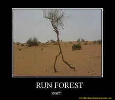 Demotivational poster: run forest