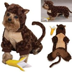 Cute Brown Monkey Suit For Dogs Pet Clothing Size 2 Cute Brown Monkey Suit For Dogs Pet Cloth Monkey Costumes Monkey