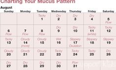 Support Kids Ovulation Chart How To Predict By Charting Your Basal Body Temperature