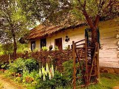 Obľúbené fotky | Modrastrecha.sk