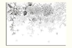 55 x 35 Sketch Flowers Wallpaper Black and White by DreamyWall