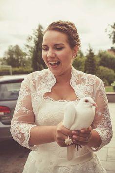 Hochzeitstaube. Wedding Dove.