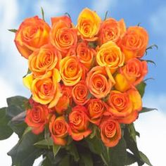 150 Fresh Cut Dark Yellow Roses Long Stem | Amber Roses | Fresh Flowers Wholesale Express Delivery | Perfect for Birthdays, Anniversary or any occasion. ** For more information, visit image link.
