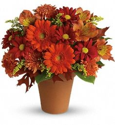 """""""Golden Glow"""" keeps with the fall theme using the yellow undertones in mini orange gerberas, astromeria, and red daisies."""