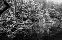 Klagenfurt, Shades Of Grey, Black And White, Abstract, Artwork, Water Pond, Summary, Work Of Art, Black N White