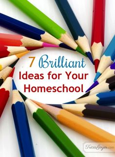 7 Brilliant Ideas for Your Homeschool. Great ideas to save money, time and effort and yet give your child a GREAT education!