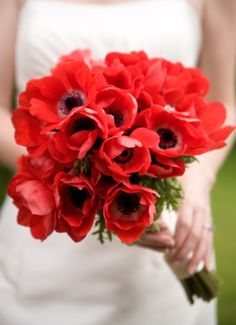 poppies! Soooo pretty in a wedding bouquet! So would do this for a spring or summer wedding (:
