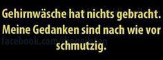 dreamies.de (750okbx9vsk.jpg)
