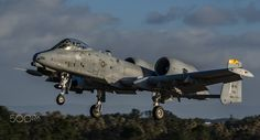 Warthog - A Fairchild Republic A-10 Thunderbolt II, during the Portuguese Air Force exercise Real Thaw 2013.