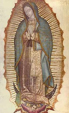 Our Lady of Guadalupe: A Beloved Inspiration for Prayer and Conversion
