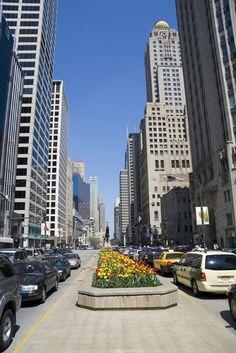 Michigan Avenue Chicago IL