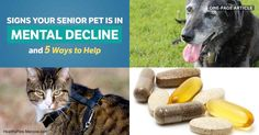Cats and dogs experience mental decline as they age, but if you watch for these telltale signs and catch them early, you can delay the onset and progression. https://healthypets.mercola.com/sites/healthypets/archive/2017/11/18/dogs-cats-cognitive-dysfunction-syndrome.aspx?utm_source=petsnl&utm_medium=email&utm_content=art1&utm_campaign=20171118Z1&et_cid=DM170904&et_rid=125038985